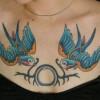 Tatuiruotės and krūtinės mažas pav.